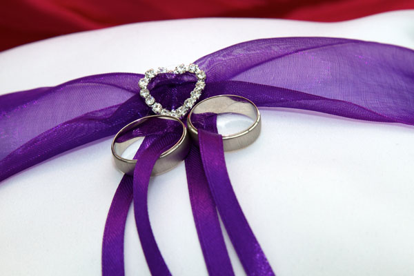 gay weddings rings on cushion